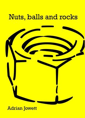 Nuts, Balls and Rocks: A Year of Life from the Diagnosis of Testicular Cancer to Recovery (Paperback)