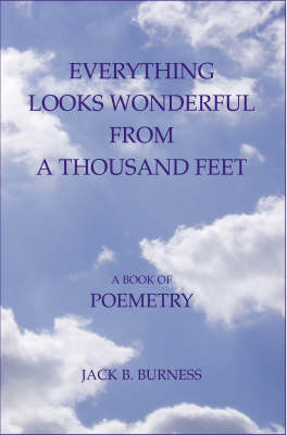Everything Looks Wonderful from a Thousand Feet: A Book of Poemetry (Paperback)