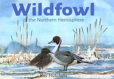 Wildfowl of the Northern Hemisphere (Paperback)