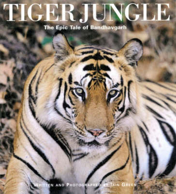 Tiger Jungle: The Epic Tale of Bandhavgarh (Hardback)