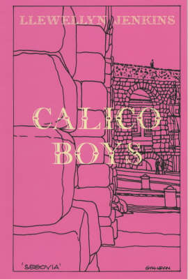 Calico Boys (Hardback)