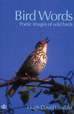 Bird Words: Poetic Images of Wild Birds (Paperback)