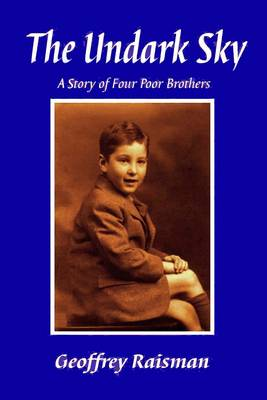 The Undark Sky: A Story of Four Poor Brothers (Paperback)