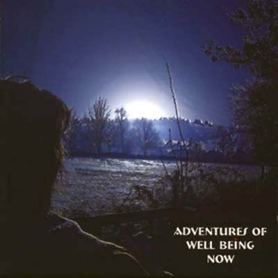 Adventures of Well Being Now (CD-Audio)