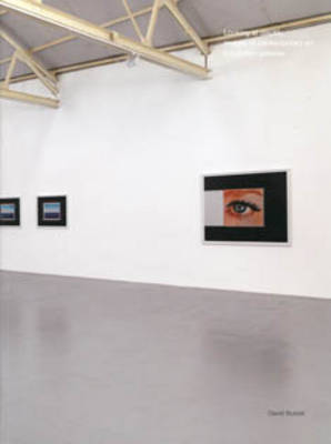 Looking at Display: Images of Contemporary Art in London Galleries (Paperback)