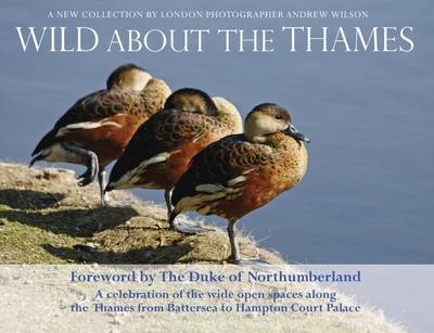 Wild About the Thames: A Celebration of the Open Spaces Along the Thames from Battersea to Hampton Court (Paperback)