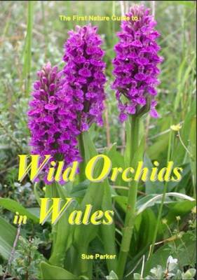 Wild Orchids in Wales (Paperback)