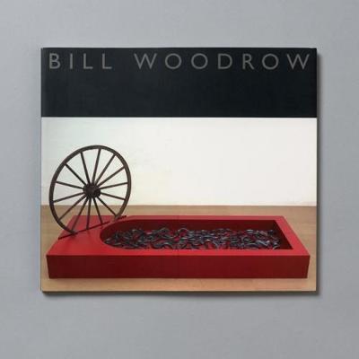 Bill Woodrow: Sculptures (Paperback)