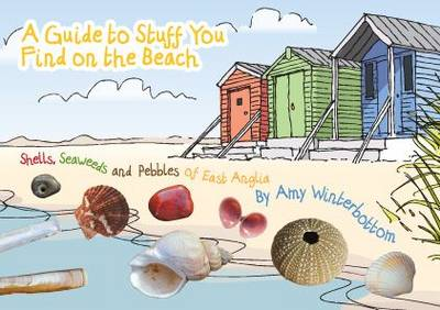 A Guide to Stuff You Find on the Beach: Shells, Seaweeds and Pebbles of East Anglia (Paperback)