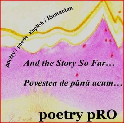 And the Story So Far...: Povestea De Pana Acum... (CD-Audio)