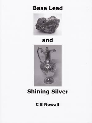 Base Lead and Shining Silver: The Hall Family of Middleton-by-Wirksworth and Sheffield 1700 - 1940 (Paperback)