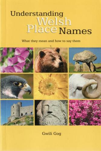 Understanding Welsh Place Names: What They Mean and How to Say Them (Paperback)