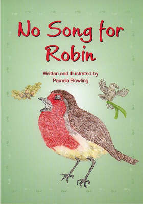 No Song for Robin (Paperback)