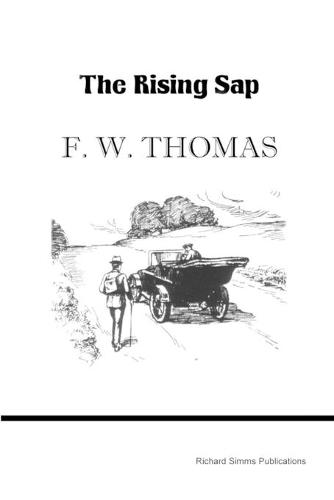 The Rising SAP (Paperback)