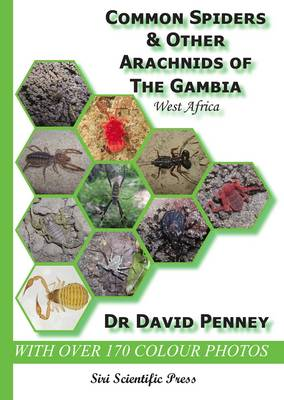 Common Spiders and Other Arachnids of the Gambia, West Africa (Paperback)