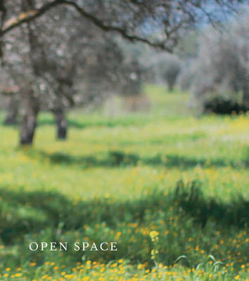 Open Space (Paperback)