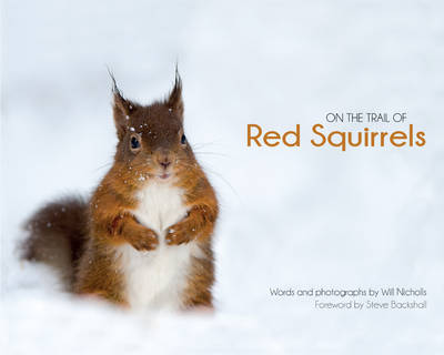 On the Trail of Red Squirrels (Hardback)