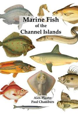 Marine Fish of the Channel Islands (Paperback)