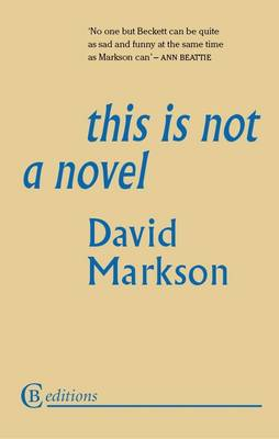 This is Not a Novel (Paperback)