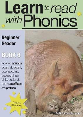Learn to Read with Phonics: Beginner Reader v. 8, Bk. 6 (Paperback)