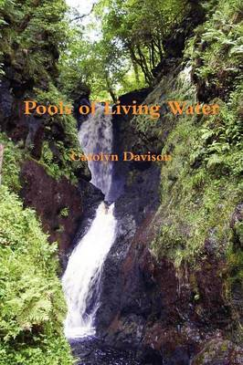 Pools of Living Water (Paperback)