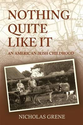 Nothing Quite Like It (Paperback)