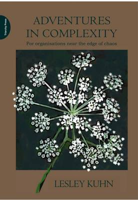 Adventures in Complexity: For Organisations Near the Edge of Chaos (Paperback)