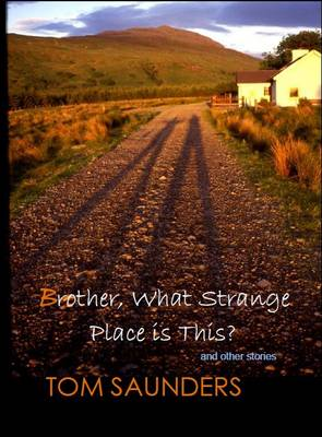 Brother, What Strange Place is This?: And Other Stories (Paperback)