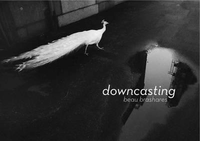 Downcasting (Paperback)