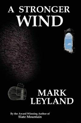 A Stronger Wind (Paperback)