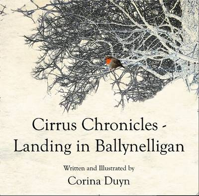 Landing in Ballynelligan - Cirrus Chronicles (Paperback)