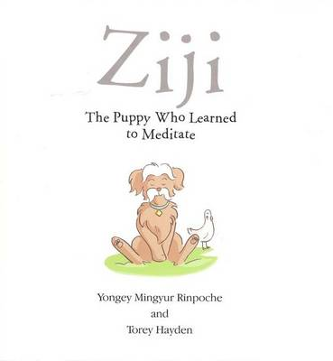 Ziji: The Puppy Who Learned to Meditate (Paperback)