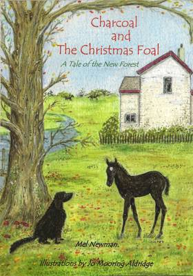 Charcoal and the Christmas Foal: A Tale of the New Forest - Charcoal in the New Forest One (Paperback)