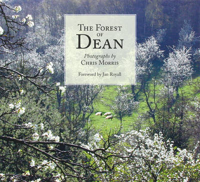 The Forest of Dean (Paperback)