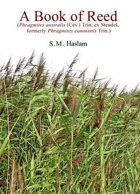 A Book of Reed: (Phragmites Australis (Cav.) Trin. Ex Steudel, Formerly Phragmites Communis Trin.) (Paperback)
