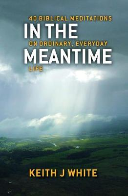 In the Meantime (Paperback)