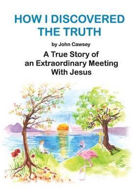 How I Discovered the Truth: A True Story of an Extraordinary Meeting with Jesus (Paperback)