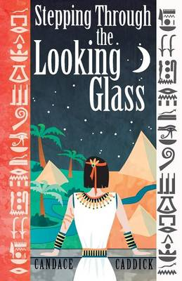 Stepping Through the Looking Glass: Life on the Other Side (Paperback)