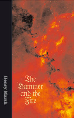 The Hammer and the Fire (Hardback)