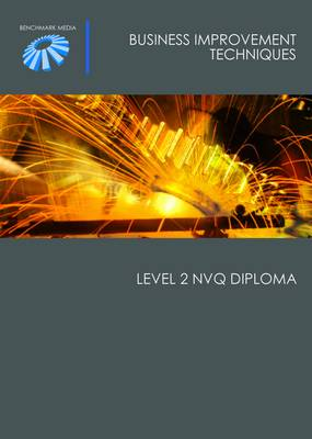 Business Improvement Techniques: Level 2 NVQ Diploma (Paperback)