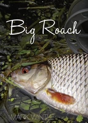 Big Roach (Hardback)