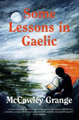 Some Lessons in Gaelic (Paperback)