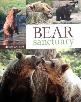 Bear Sanctuary (Paperback)