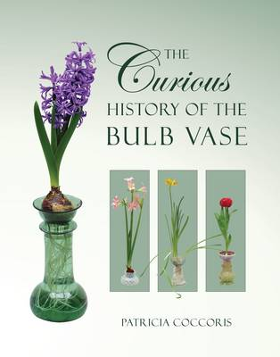 The Curious History Of The Bulb Vase By Patricia Coccoris Waterstones