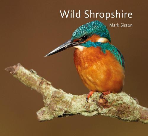 Wild Shropshire (Hardback)