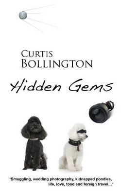 Hidden Gems (Paperback)