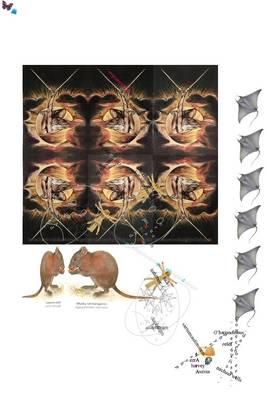 Jackinthebox:-(: Iediableenboite9 (Paperback)