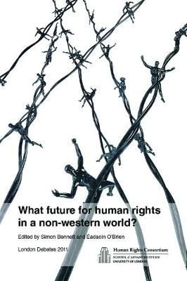 What Future for Human Rights in a Non-Western World? (Paperback)