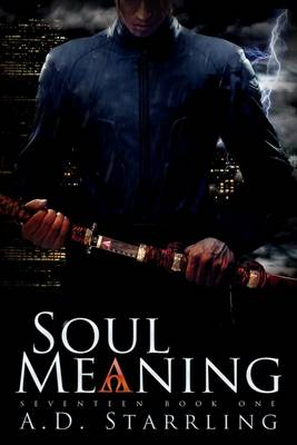 Soul Meaning - Seventeen Book 1 (Paperback)