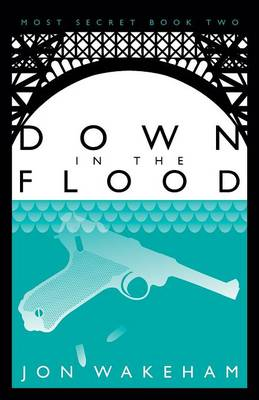 Down in the Flood: Book 2: Most Secret (Paperback)